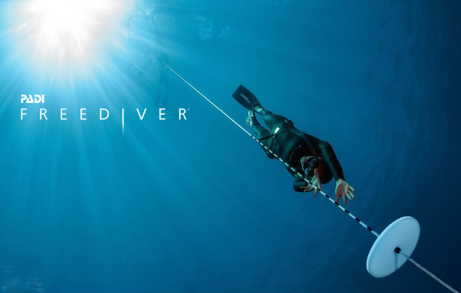 freediver-course